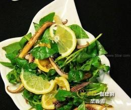 荆芥鱿鱼须