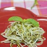 素炒豆芽(素菜-自发豆芽菜)