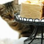 焦糖蛋糕(甜品-面糊类蛋糕的制作)