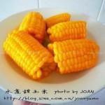 水煮甜玉米(煮玉米加点小苏打,美味又营养)