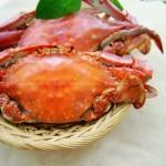 挑选螃蟹的小窍门(生活窍门)