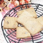 红枣麦芽饼干(零食)