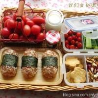 红糙米饭团野餐便当