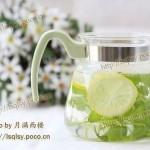 柠檬薄荷饮(自制饮料菜谱)