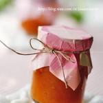 杏儿酱(自制酱料菜谱)