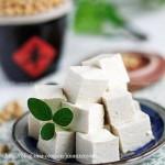 家庭自制豆腐攻略(自制豆制品菜谱)