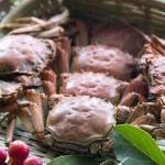 水煮河蟹(河鲜菜谱)