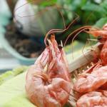 微波爐烤蝦干(微波爐菜譜)