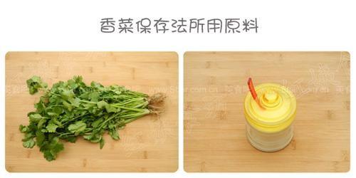 香菜怎么保存?