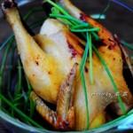 无水电饭锅焗鸡(电饭锅菜谱)