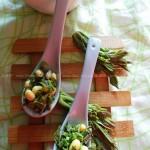 香椿豆儿(春季凉菜)