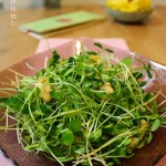 香椿苗拌核桃仁的做法