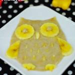 猫头鹰香蕉泥(适合6-8个月以上宝宝食用)
