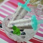 酸奶蓝莓冰棒(零添加、零负担、零难度冰棍自制)