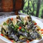 君子菜蒸黄颡鱼(秋季袪燥清心美味鱼)