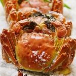 古法臻味盐焗蟹
