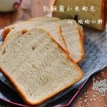 乳酸菌小米面包(早餐菜谱)