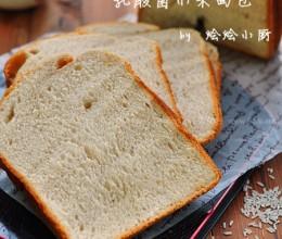 乳酸菌小米面包
