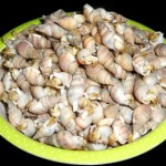 清煮海螺蛳