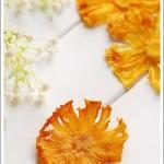菠萝果干(春游小零食)