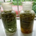 四川豇豆泡菜(品味《舌尖上的中国2》的家常美味)