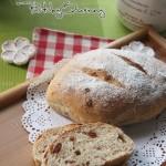 乡村蔓越莓面包(早餐菜谱)
