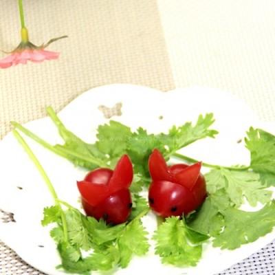 小番茄兔子