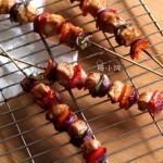 彩椒鸡肉烤串(烤箱菜)