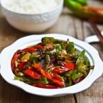 豆豉辣椒(超下饭的家常菜)