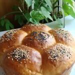 汤种面包(新手也能做拉丝面包)