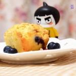 PH大师的蓝莓玛芬(甜品点心)