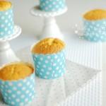 香橙海綿杯子蛋糕