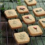 田园香草饼干