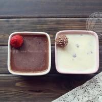 香浓香草牛奶冰淇淋和牛奶巧克力冰淇淋
