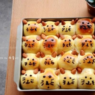 小猫咪挤挤面包