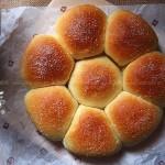 紅豆沙面包