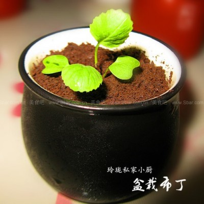 盆栽牛奶布丁