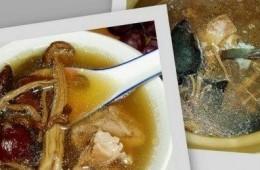 灵芝茶树菇猪骨汤
