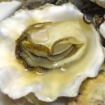 原汁原味——烤牡蛎