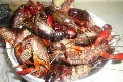 怎么样处理小龙虾