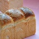 小麦胚芽土司