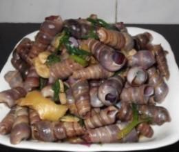 姜葱炒海钉螺
