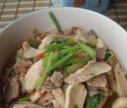 凤尾菇炒肉片