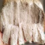 中筋粉拉丝面包