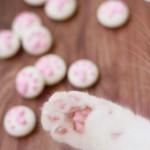 猫爪棉花糖