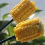 微波爐玉米