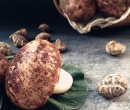 仿真蘑菇包