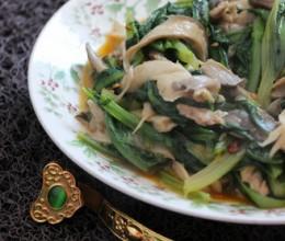 平菇油麦菜