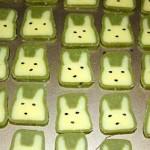 小兔子饼干