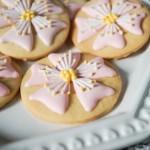 樱花饼干#九阳#